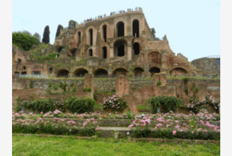 Colosseo, dopo 40 anni torna visibile la Domus Tiberiana