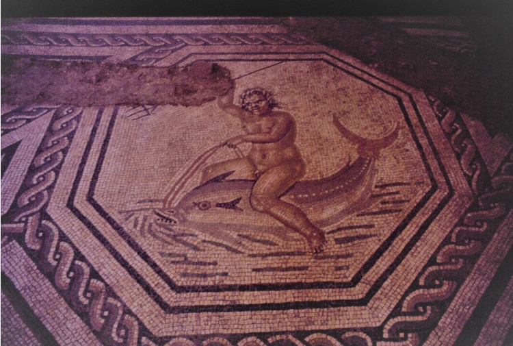 Finora 28mila euro per i mosaici di Matelica romana