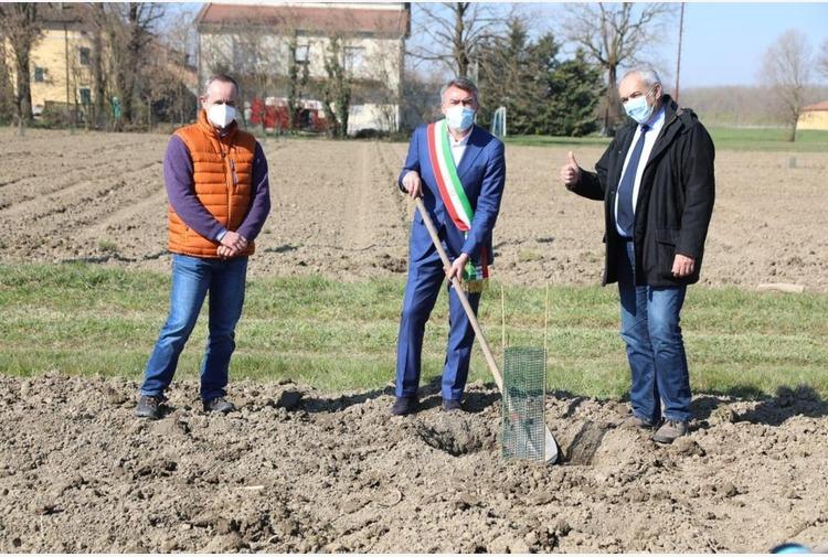 Mutti lancia 'Mille querce', il bosco diffuso nel territorio di Parma