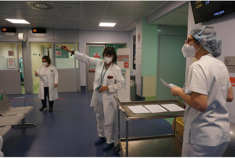 Covid: Molise, in 1.066 per 22 posti di infermiere
