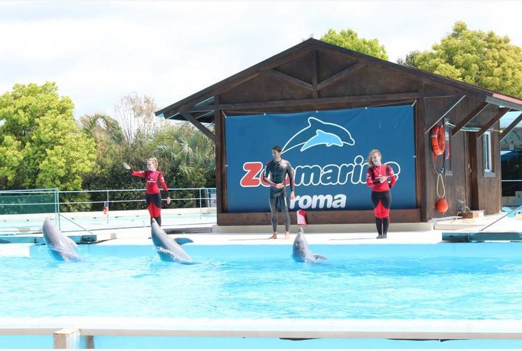 Lenzi (Zoomarine): 'Parchi fuori da piano ristori, ma ci servono strumenti per ammortizzare perdite'