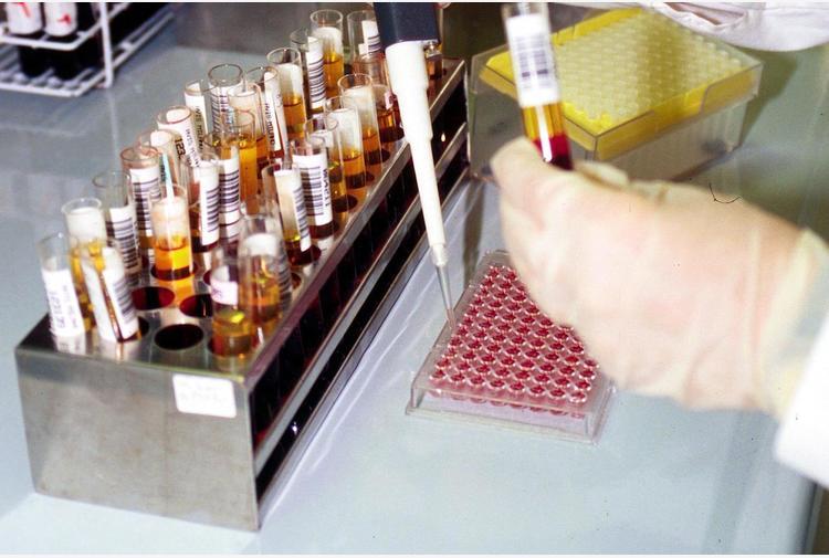 Malattie rare: Novo Nordisk rafforza impegno per pazienti emofilici e operatori sanitari