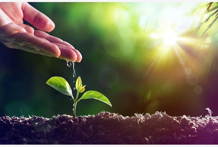 Sostenibilità alimentare, per 7 italiani su 10 corrisponde al rispetto dell'ambiente