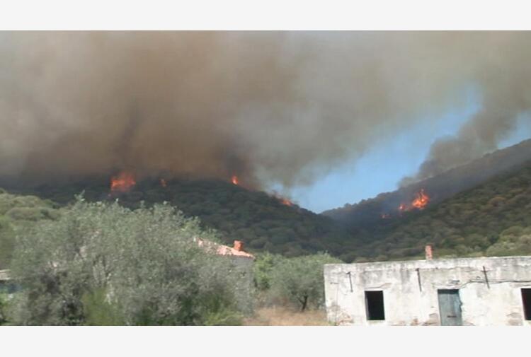 Incendi Sardegna, proseguono i soccorsi: canadair in volo