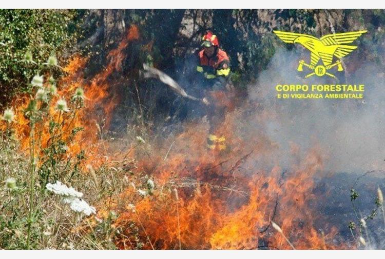 """In Sardegna proseguono le operazioni di bonifica degli incendi. Solinas: """"Emergenza enorme"""""""