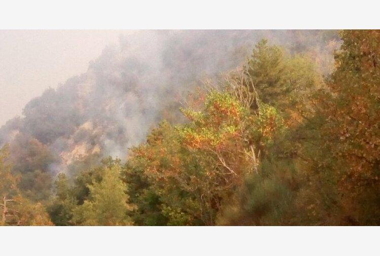 Incendi in Maremma e all'Elba, in azione gli elicotteri