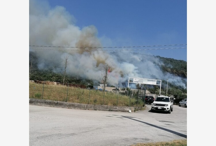 Incendi: Molise, nelle ultime ore roghi in almeno 20 comuni