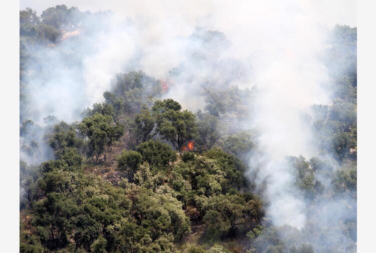 Incendi, Protezione civile: 'Richiesta attivazione meccanismo europeo'