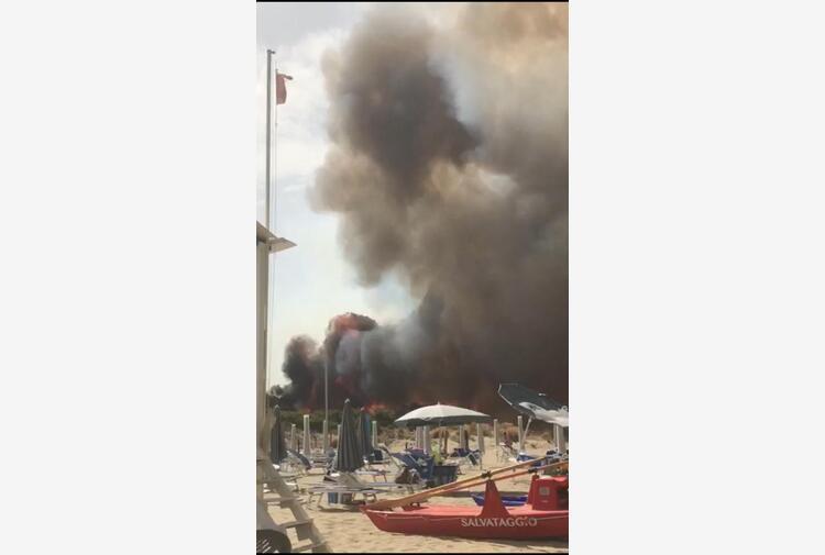 Incendi: Toma 'forti sospetti su azione preordinata'