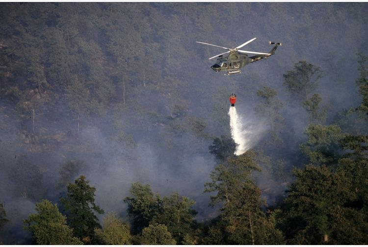 Incendi in Calabria, Patuanelli incontra sindaci dei comuni colpiti