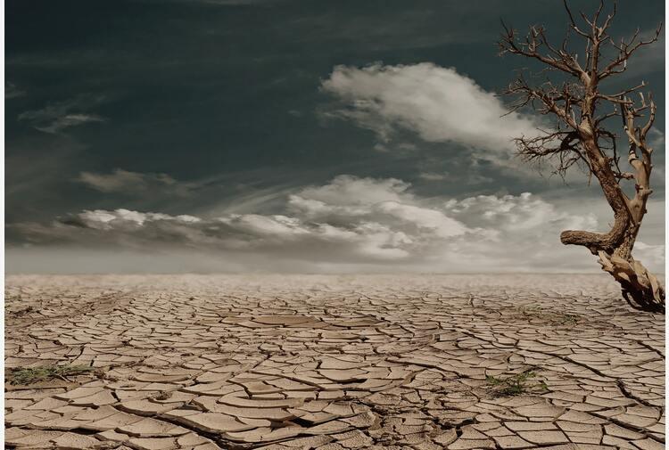 """In Asia Centrale la siccità è la """"guerra climatica"""" del futuro ma i governi non agiscono"""