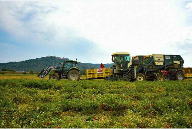 Emilia Romagna, prorogato bando da 2,5 mln per imprese montane