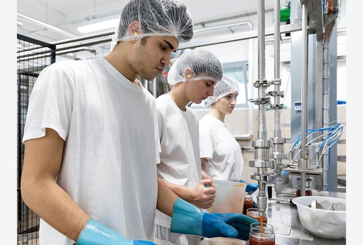Veneto, 3 mln di contributi a fondo perduto per imprenditoria giovanile