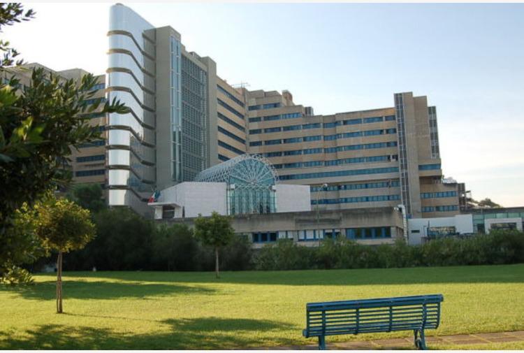 Sardegna, Nieddu 'Ospedale 'Brotzu' eccellenza nazionale per trapianti'