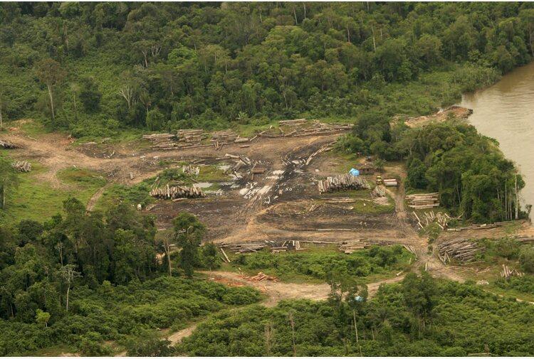 Amazzonia: ong, ad agosto maggiore deforestazione da 10 anni