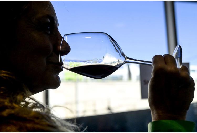 Agroalimentare, oltre 6,6 mln da Regione per promuove vini E.Romagna