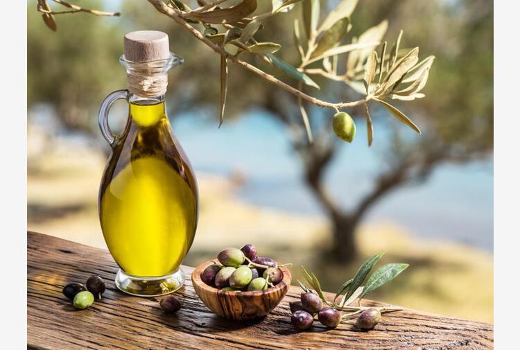 Salov, con metodo Berio olio certificato e sostenibile