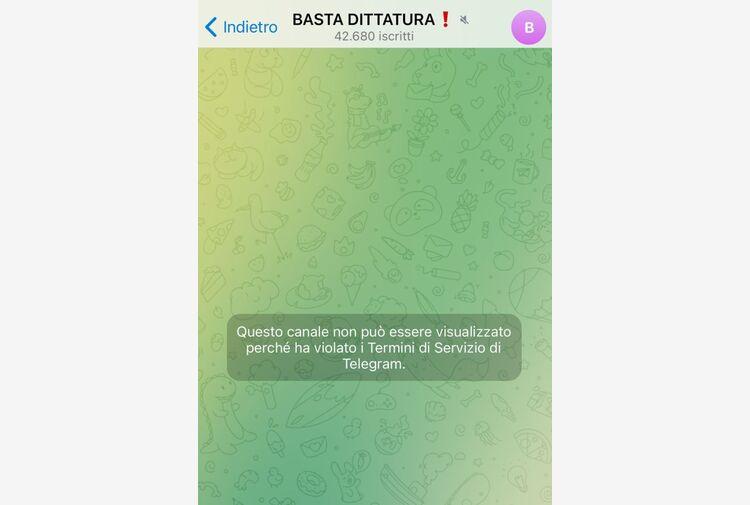Telegram oscura chat no vax, ha violato termini servizio