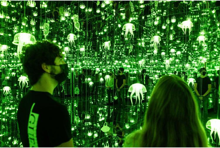 A Milano-Bicocca 'IllusiOcean', mostra dedicata all'ecosistema marino